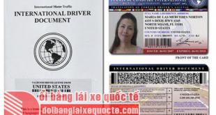 Đổi bằng lái xe quốc tế online