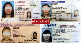 Mẫu bằng lái xe Mỹ - Cấp đổi bằng lái xe nước ngoài sang Việt Nam - Hotline: 0932.100.040