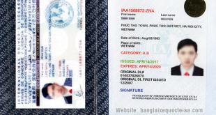 Giới thiệu GPLX quốc tế do Mỹ và Việt Nam cấp