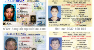 Đổi giấy phép lái xe Mỹ sang Việt Nam cấp tốc