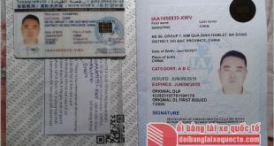 Gia hạn giấy phép lái xe quốc tế qua mạng – Phí, thủ tục gia hạn gplx quốc tế