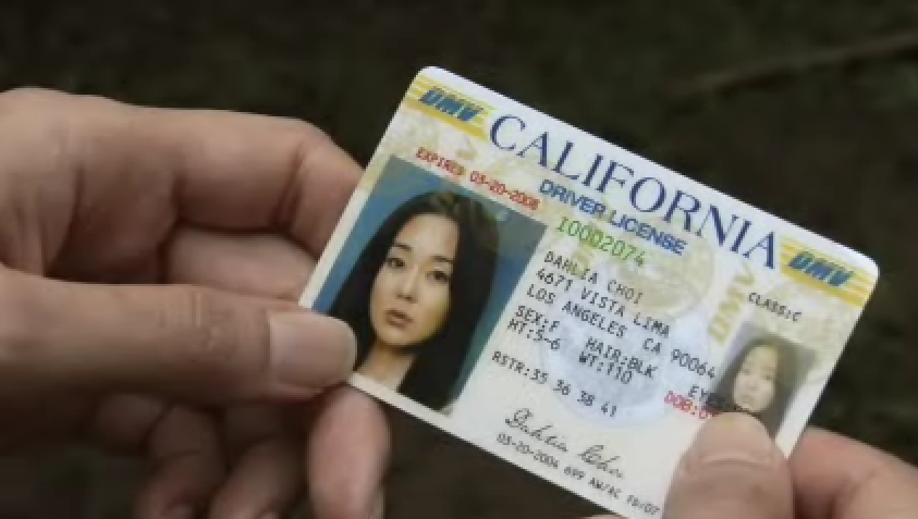 Dịch vụ đổi bằng lái xe Mỹ sang bằng lái xe Việt Nam online qua mạng