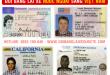 Hướng dẫn cách chuyển đổi giấy phép lái xe cho người nước ngoài ở Bình Dương