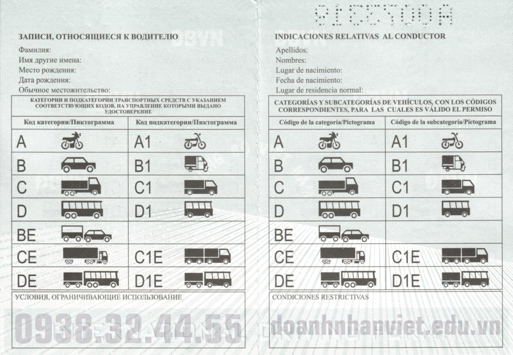 Mẫu bằng lái xe quốc tế Việt Nam cấp